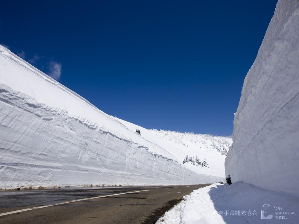 岩手ナチュラル 八幡平雪の回廊5