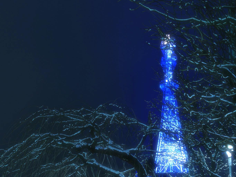 東北電力 ライトアップ